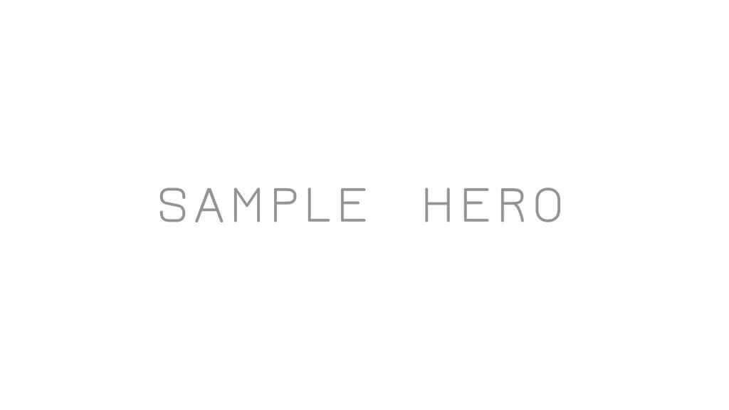 Sample Hero